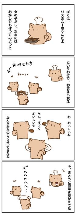 Y-8.jpg